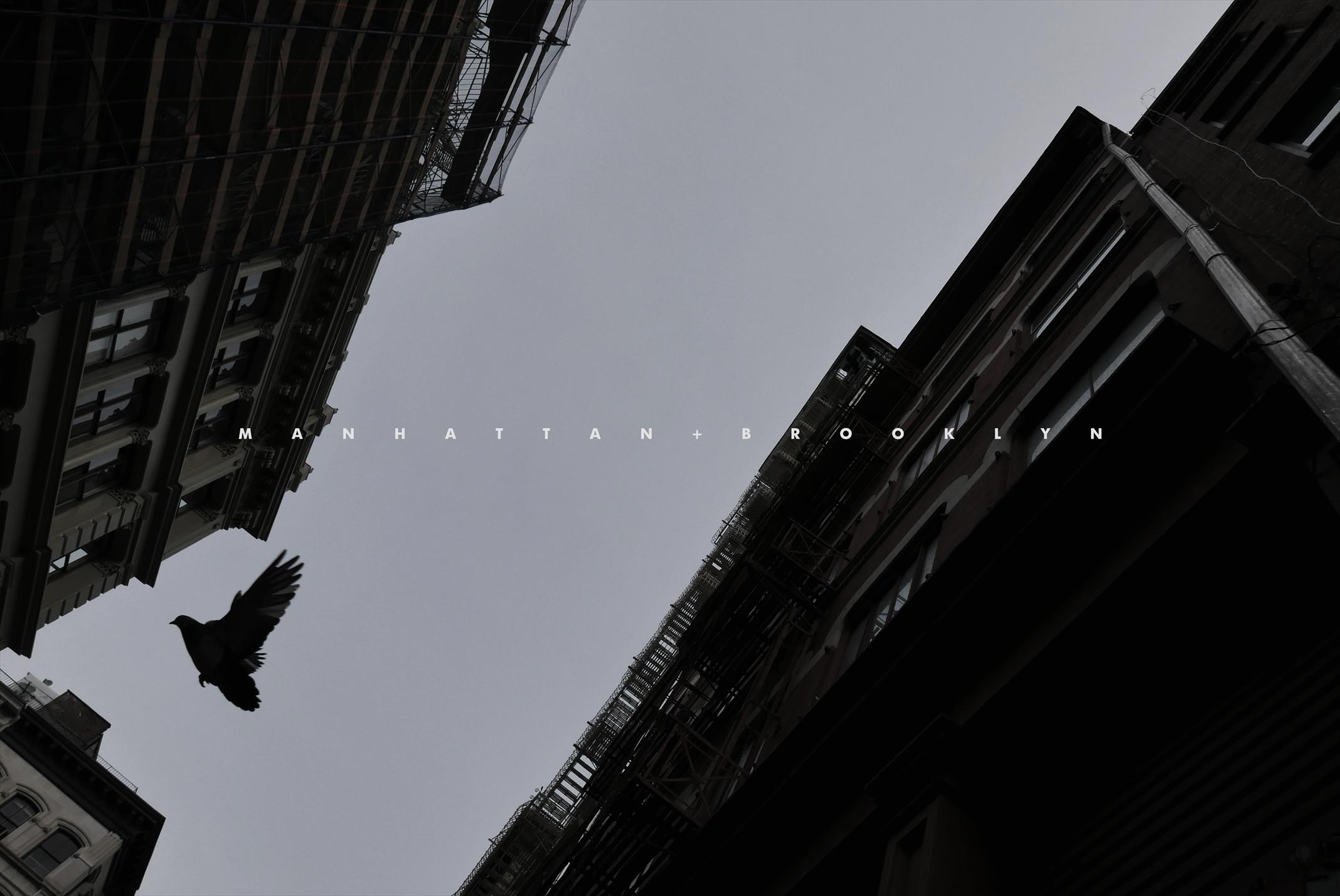 """NEWYORK 2016 """"MANHATTAN + BROOKLYN"""""""